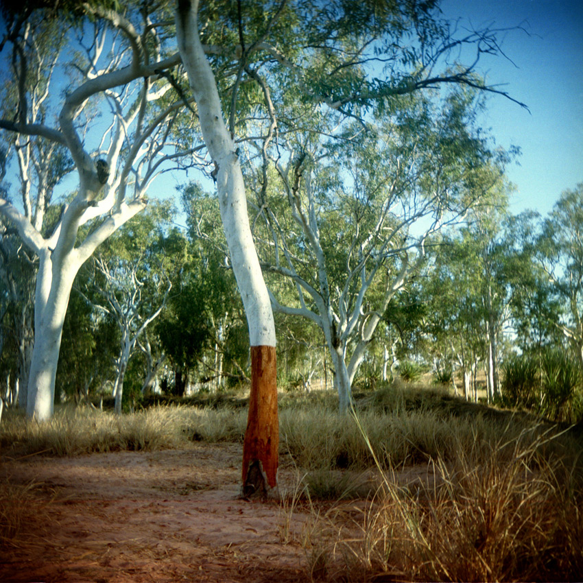 Gibb River Road, Kimberley