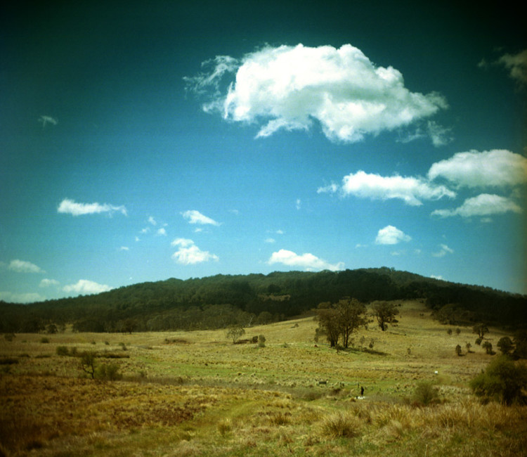 Werrikimbe Nationalpark, New South Wales